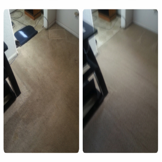 citrus-carpet-cleaning-broomfield-99 2
